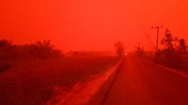 印尼雨林大火霾害 蘇門答臘天空一片血紅