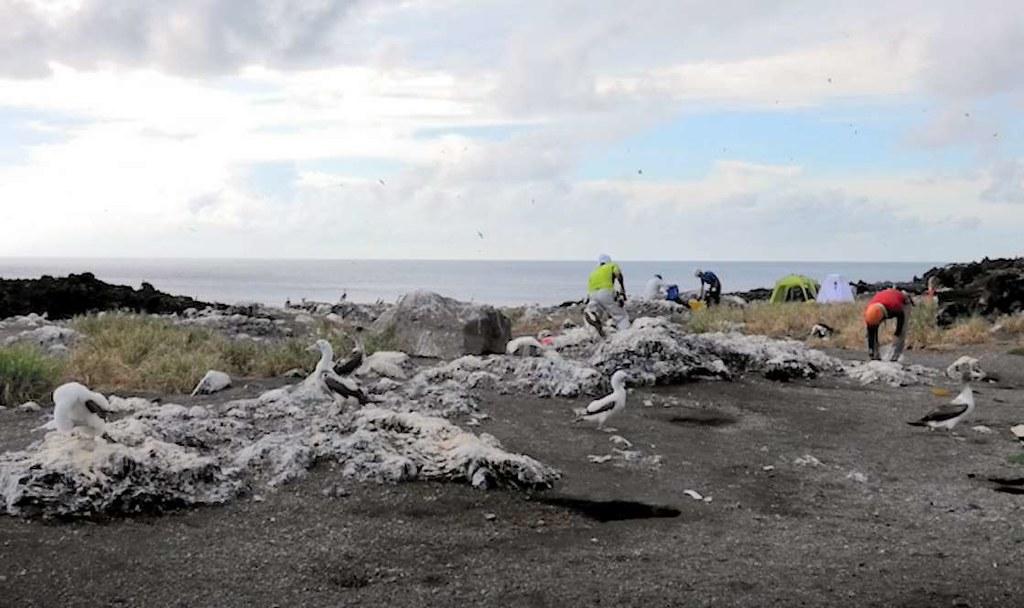 小笠原群島的父島以西約130公里處的西之島,自2013年起持續噴發一段時間後